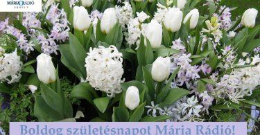 tavaszi_viragok_szulinap.jpg