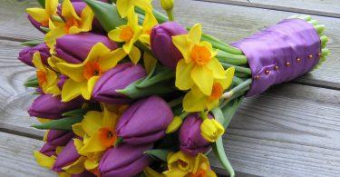 tavasz8_szoveggel.jpg