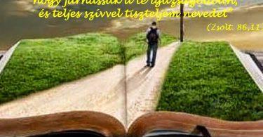 biblia_1663165020_n_copy.jpg